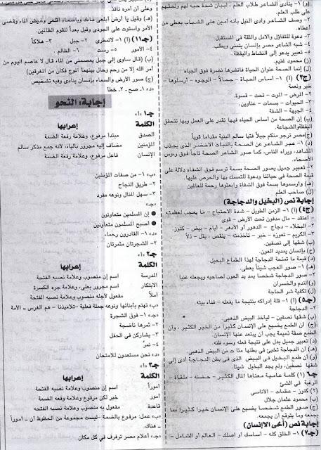 مراجعة الصف السادس الإبتدائى لغة عربية محلولة جريدة الجمهورية