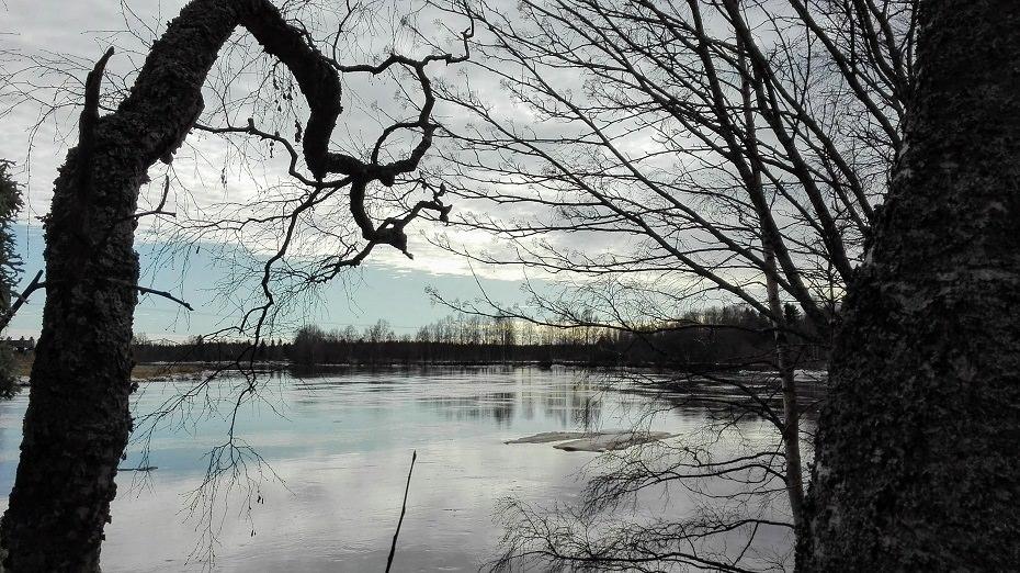 keväällä jäät sulavat joesta