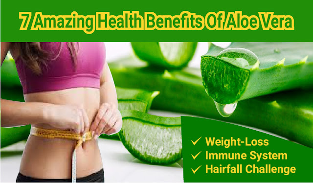 Aloe Vera; Aloe Vera juice; health benefits; Vitamins & Minerals; Weight-Loss; Aloe Vera for Dry Skin; Immune System; Hairfall; mouthwash; good health; aloe vera plant; Latest For Health