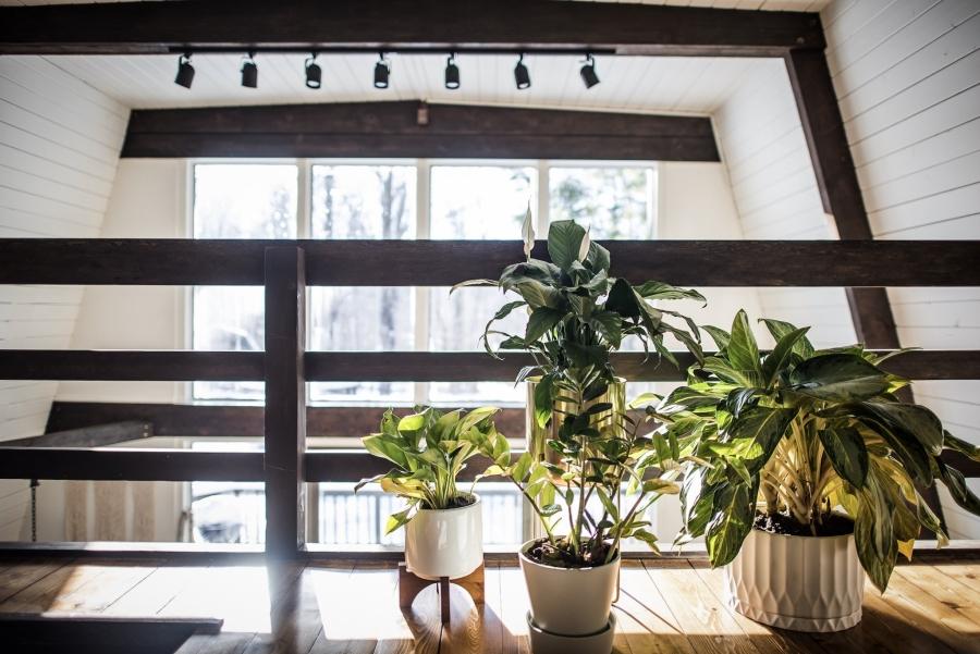 Skandynawski dom z elementami boho - wystrój wnętrz, wnętrza, urządzanie mieszkania, dom, home decor, dekoracje, aranżacje, minty inspirations, styl skandynawski, naturalne drewno, drewniana podłoga, boho, scandinavian style, otwarta przestrzeń, drewniane belki, sypialnia, poduszki, makrama, wiszący fotel, huśtawka, kwiaty