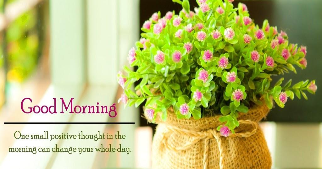 Good morning rose images hd 1080p download