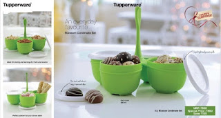 Tupperware blossom condimate set