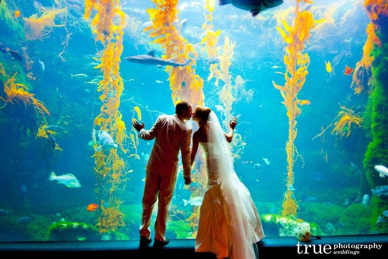Aquarium Wedding in California - Birch Aquarium at Scripps