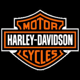 logo dls motor harley davidson