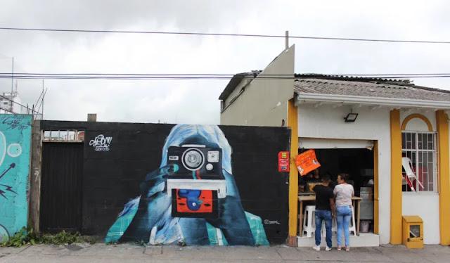 Il murale negativo che può essere sviluppato invertendo la foto