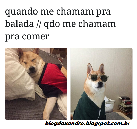 comer.png (540×507)