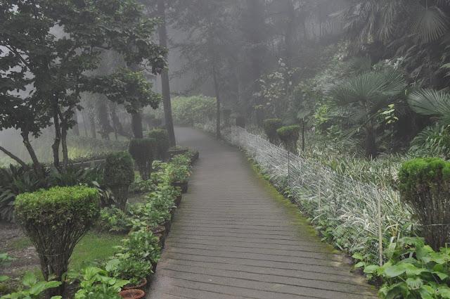 uncle garden