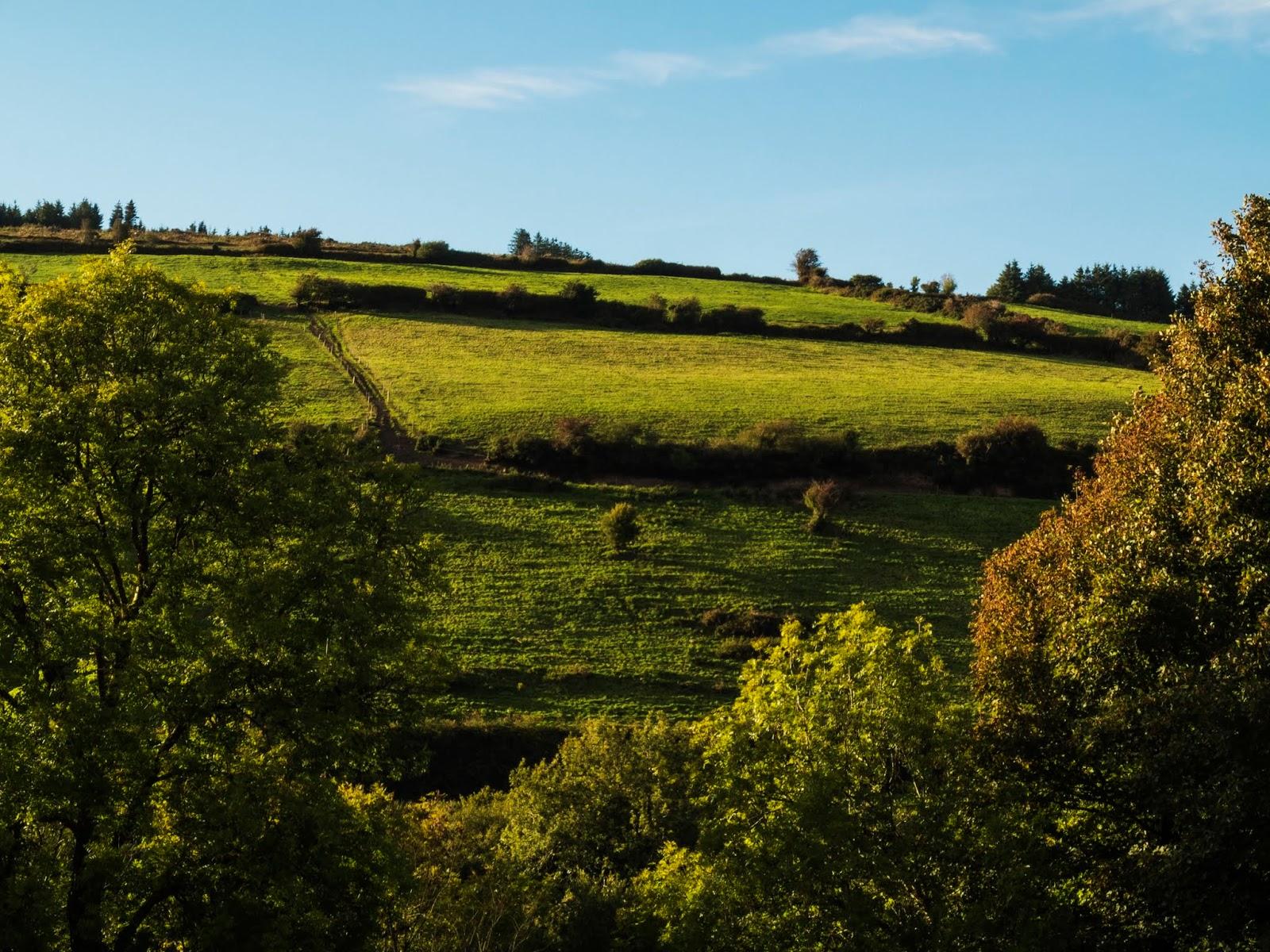 Sun shining on a hillside in the Boggeragh Mountains, Co.Cork.