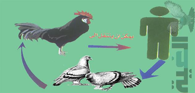تعرف علي الامراض المشتركة بين الطيور والانسان وطرق الوقاية والعلاج
