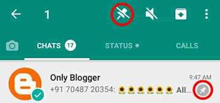 Whatsap mute notification