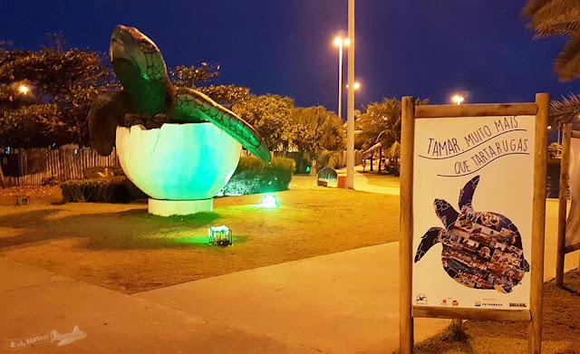 Oceanário, Projeto Tamar, Aracaju, Sergipe