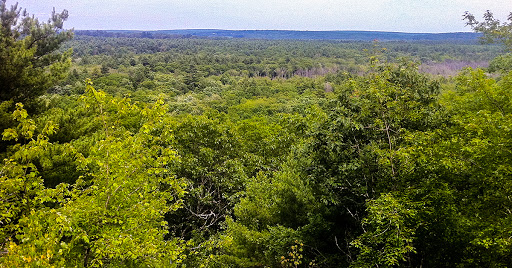 Nehantic Trail - View from Mount Misery. - Morrow Long