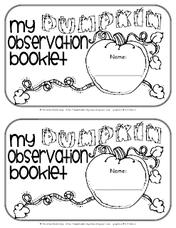 rock observation sheet 1st grade freebie