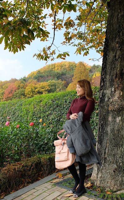 a photo of Rootote, Japanese multi-functional totes and backpacks review