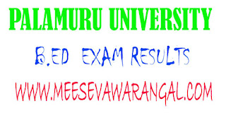 Palamuru University B.Ed 1st Sem March 2016 Exam Results