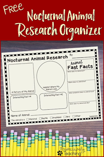 Free Nocturnal Animal Graphic Organizer!  The perfect addition to any study of nocturnal animals.