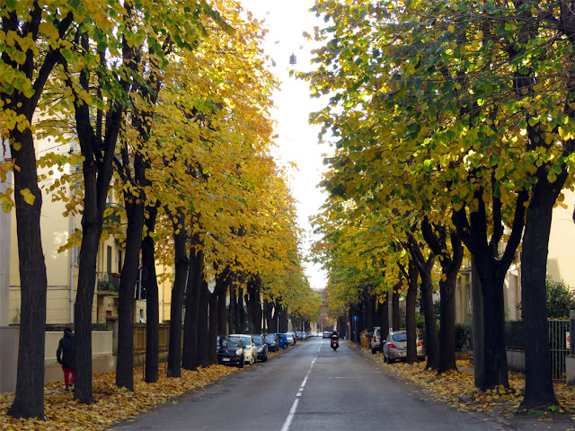 Viale Mameli in late November, Livorno