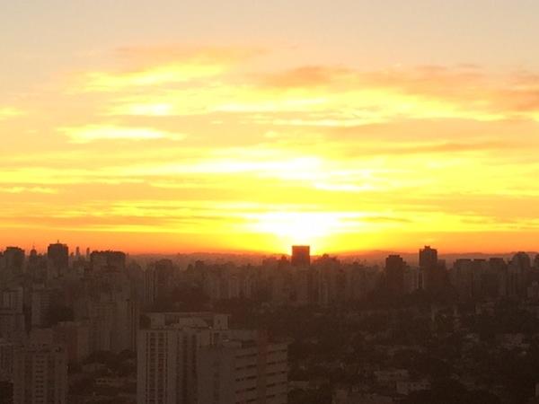 O brilho do DOURADO pela manhã.