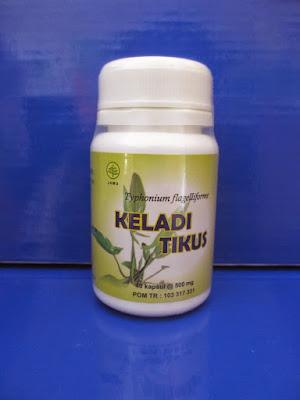 Toko Herbal Jual Kapsul Keladi Tikus Di Surabaya Sidoarjo | Herbal Kanker