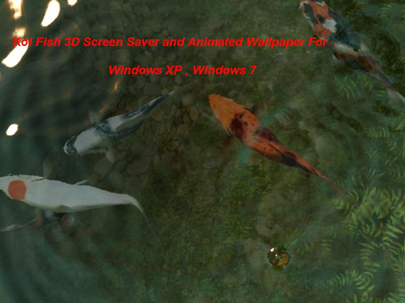 Koi Fish 3D Screen Saver and Animated Wallpaper For ...