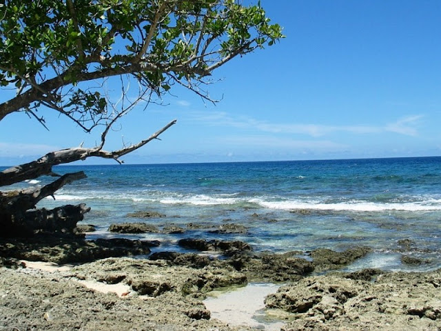 Destinasi Wisata Pantai Untuk Keluarga di Papua