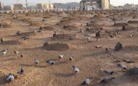 Medine'de Ölen Hacılar Nereye Gömülüyor? Medine'de Ölen Türk Hacılar Nereye Gömülür?