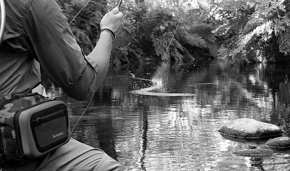 Pesca a Mosca Galicia: LA PESCA A MOSCA SECA, I PARTE (CAÑAS, PASO A ...