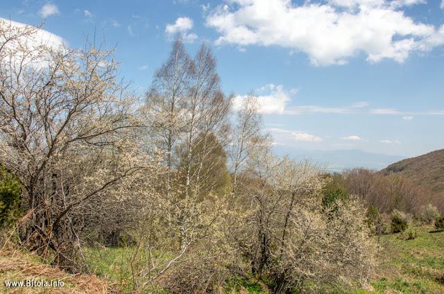 Neolica Hiking Trail, Bitola, Macedonia