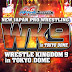 Reporte NJPW - Wrestle Kingdom 9 (04-01-2015)