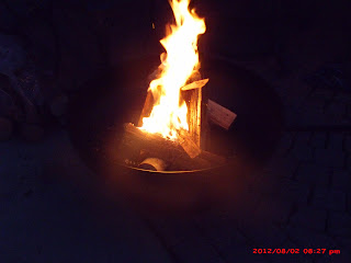 A Lucky Ladybug Ohio Flame Patriot Fire Pit Review Reposted