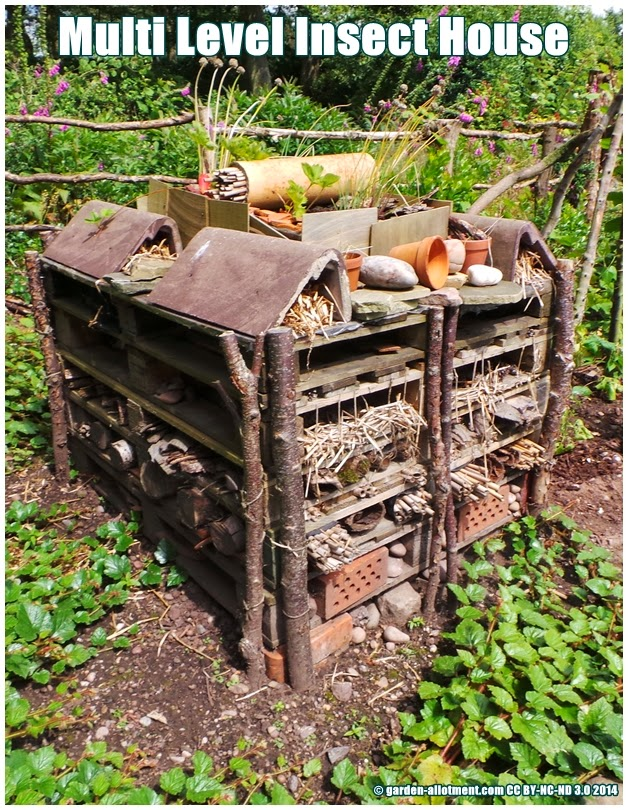 Looking For Ideas On Making A Bug Or Insect House ? Allotment