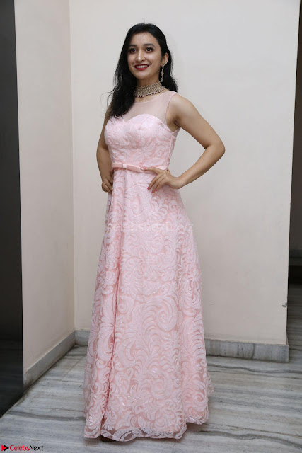 Sakshi Kakkar in beautiful light pink gown at Idem Deyyam music launch ~ Celebrities Exclusive Galleries 001.JPG