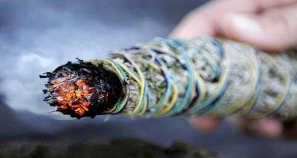 negativitatea dispare daca arzi aceste plante