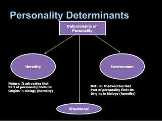 Determinants of personality