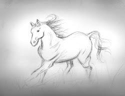 pencil drawings horses drawing sketches beauty simple horse easy sketch running nature graphite van mental alain sandra illness paper afkomstig
