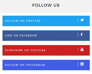 socail follow button