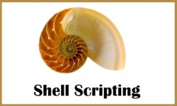 Shell Scripting Training Institutes in Hyderabad