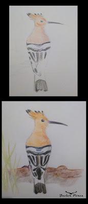 Ilustración abubilla