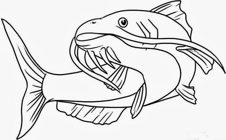 Catfish tattoo stencil