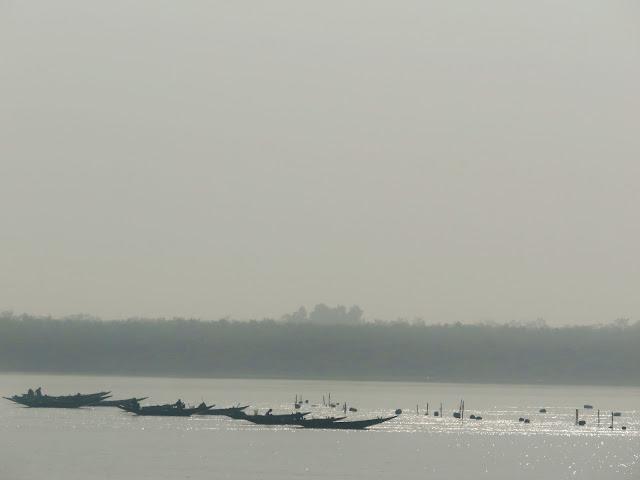 Samshernagar Sundarban Tourism Homestay