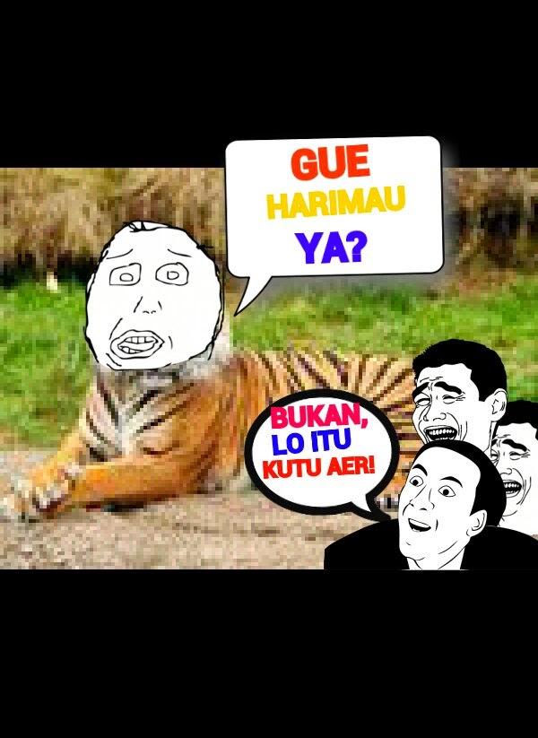 10 Fakta Tentang Harimau yang Harus Kamu Ketahui