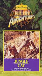 Rugidos en la selva (1960) Descargar y ver Online Gratis