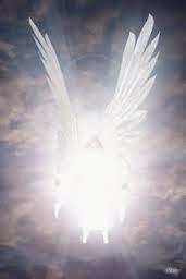Estudos sobre os Anjos do Senhor