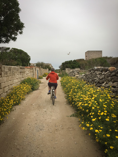 Favignana by bicycle