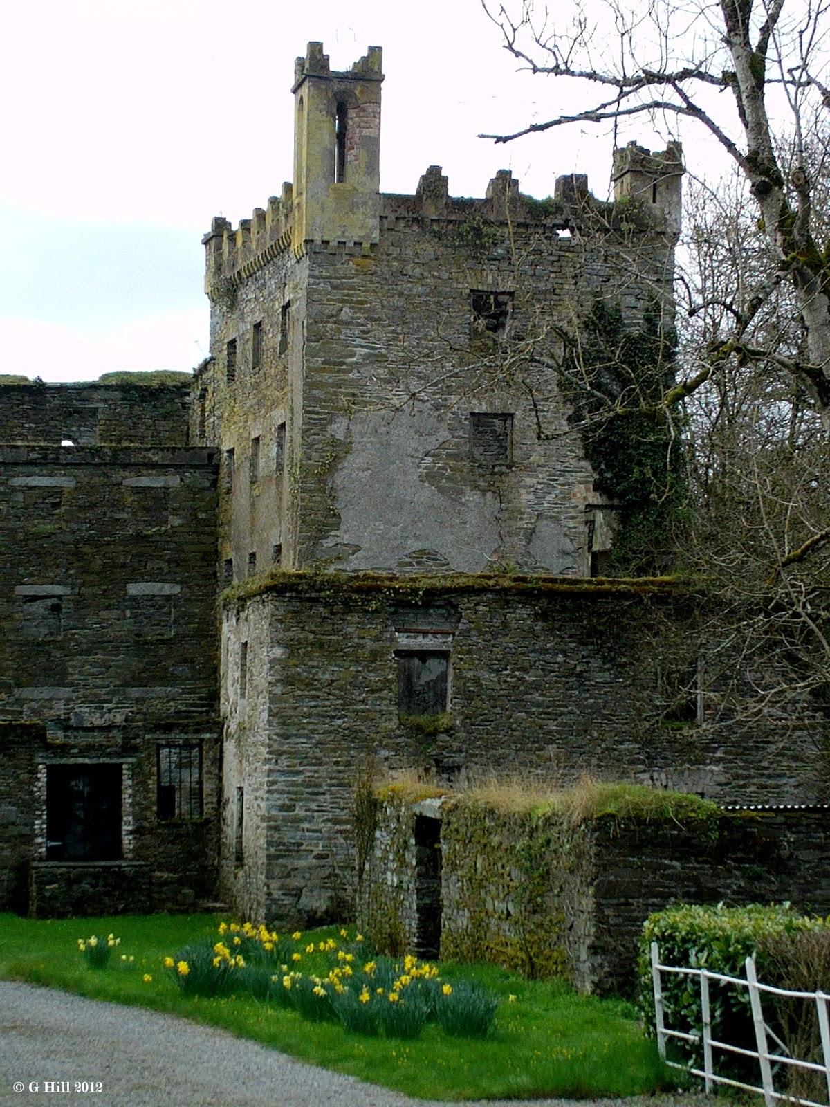 Ireland In Ruins: Moone Mill Co Kildare