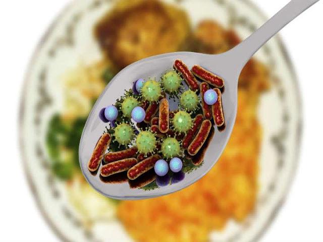 Bacterias que se encuentran en los alimentos