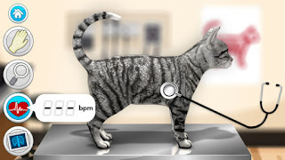Screenshot of tabby cat being examined with stethoscope