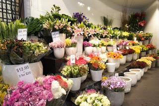 toko bunga mawar di solo,harga bunga mawar per tangkai di medan,alamat toko bunga mawar di medan,jual bunga hidup segar di medan,toko bunga mawar di samarinda,toko bunga mawar di tangerang sidoarjo,