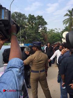 Tamil Film Industry Jallikattu Support Protest of Jallikattu  008.jpg