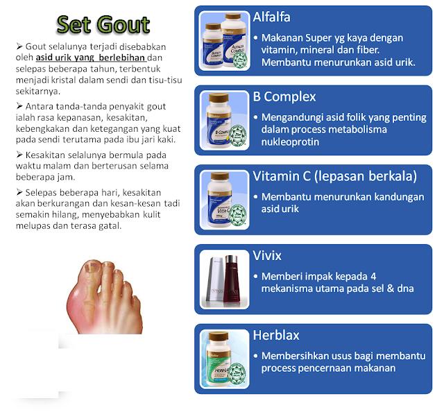 Image result for set gout shaklee